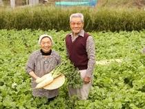 畑で自慢の野菜たちに囲まれた、じいじ ばあば