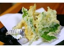 採れたて山菜の天ぷら!