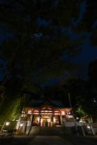 夜の来宮神社③