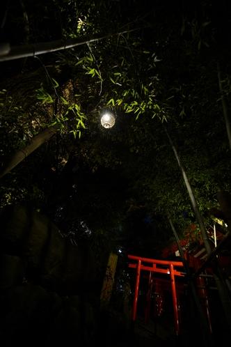 夜の来宮神社②