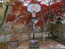 庭でバスケ!