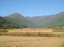田舎の原風景!実りの秋!