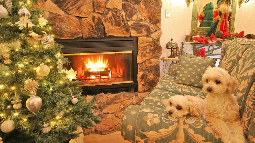 Xmasシーズンには暖炉の前にツリーが★