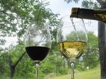アルゼンチン ワイン
