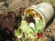 エコ、生ごみ土にかわります