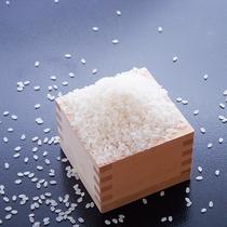 【食材一例】お米は丹後産こしひかりを使用しています