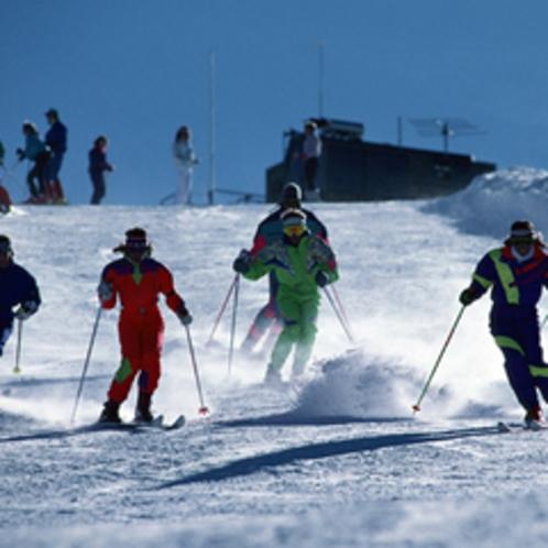 志賀高原のゲレンデでアクティブにスキーを楽しめます。