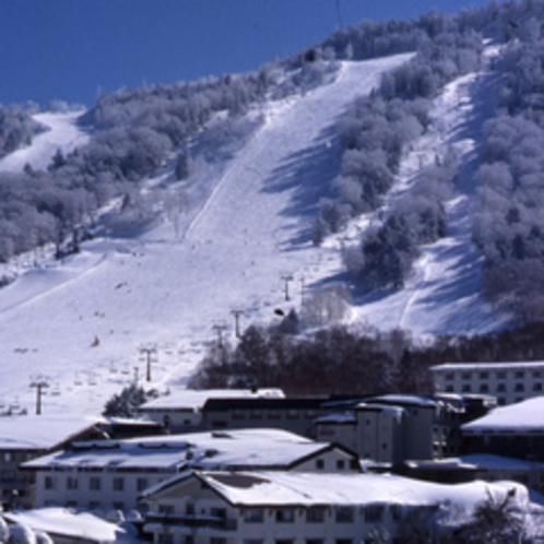 志賀高原は日本有数のスノーリゾート!当ホテルは中心エリアに位置します。スキー場へのアクセス抜群♪