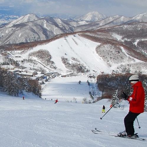 広大な志賀高原の大自然の中でスキーを満喫♪当館より「一の瀬スキー場」まで100mの好立地