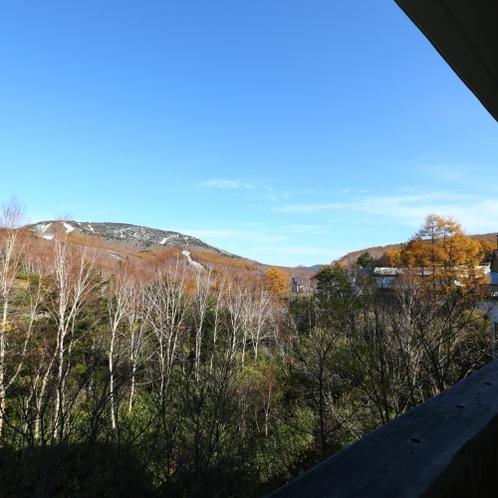 和洋室の窓からは志賀高原の自然が楽しめます。