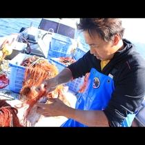 漁師のその日獲れたて旬魚でおもてなし!j