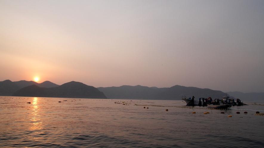 漁師体験(4月~11月限定)
