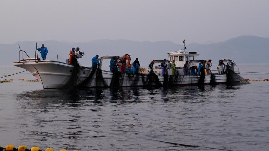 みんなで力を合わせて網を引くのも楽しいね。(漁業体験)