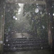 雨の伊勢神宮