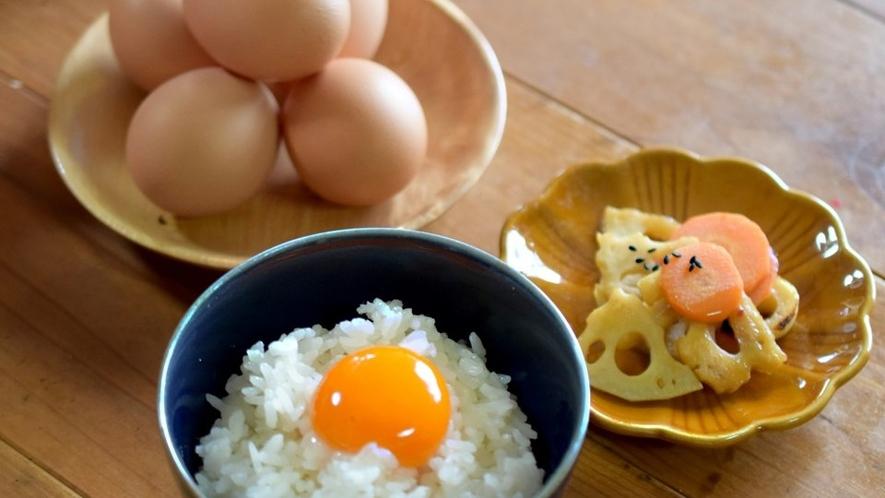 TKG 卵かけ (3)