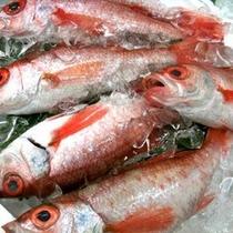 *高級魚のどぐろ