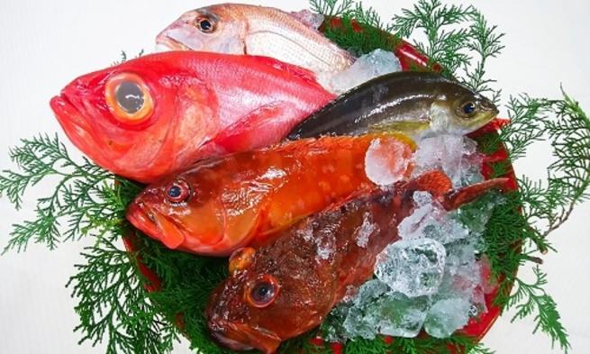 <季節の地魚> 伊豆の豊かな恵みを姿造りで。