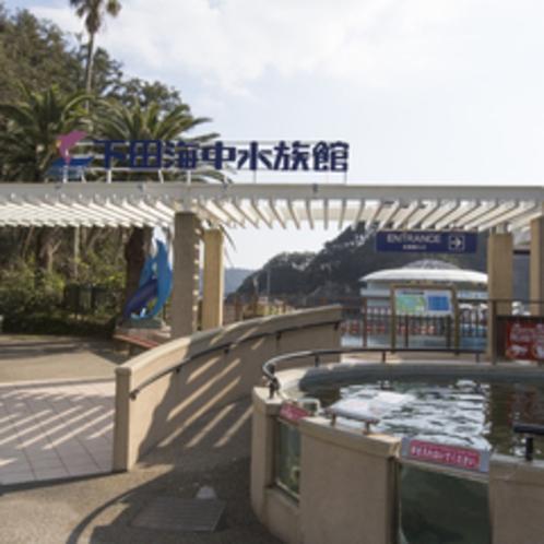 【下田観光】下田海中水族館