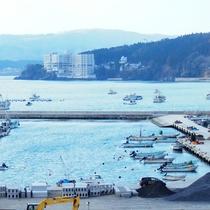 【風景】志津川港から観洋を望む