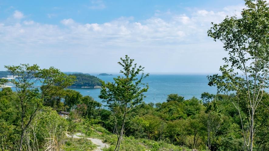 ★志津川湾を一望できるパノラマ絶景!自然豊かな「海の見えるいのちの森」