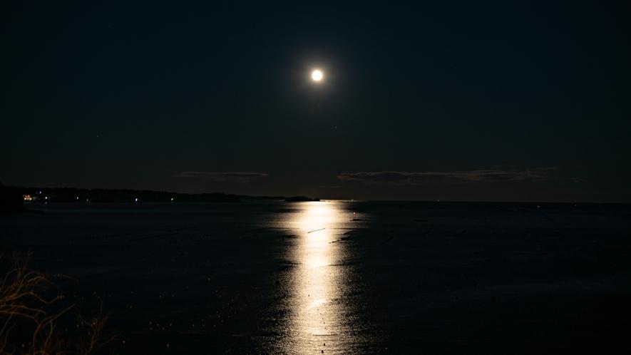 ★志津川湾を明るく照らすお月様。