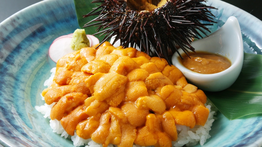 ★甘くとろけるウニをふんだんに使用!夏季限定「南三陸キラキラうに丼」