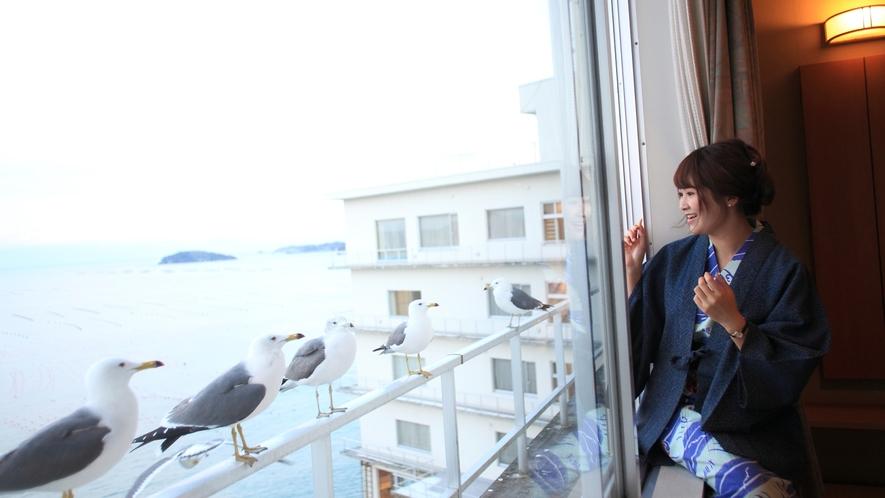 【客室】窓の外には「ウミネコ」達がお出迎え♪