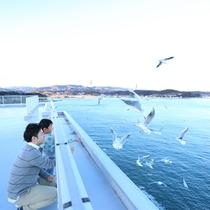 屋上「汐風の空」