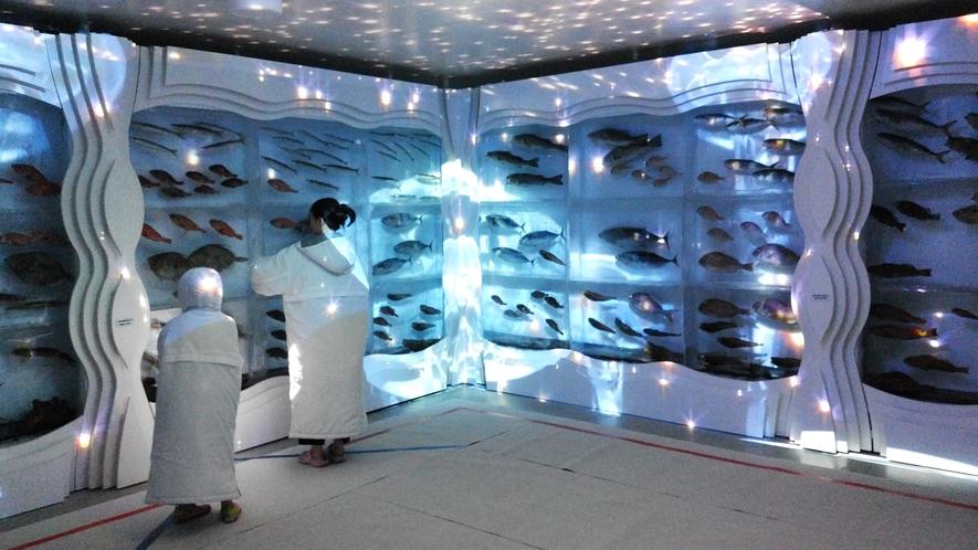 気仙沼市・氷の水族館