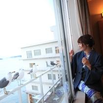 窓の外には「ウミネコ」達がお出迎え♪