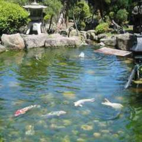 京風庭園New