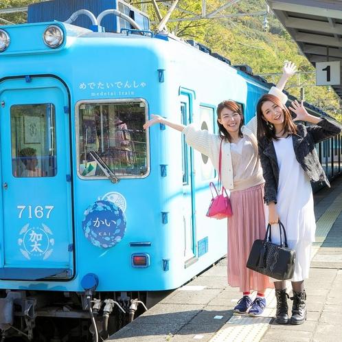 めでたい電車/南海加太線