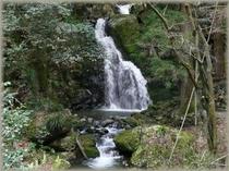 小木津山自然公園の不動滝