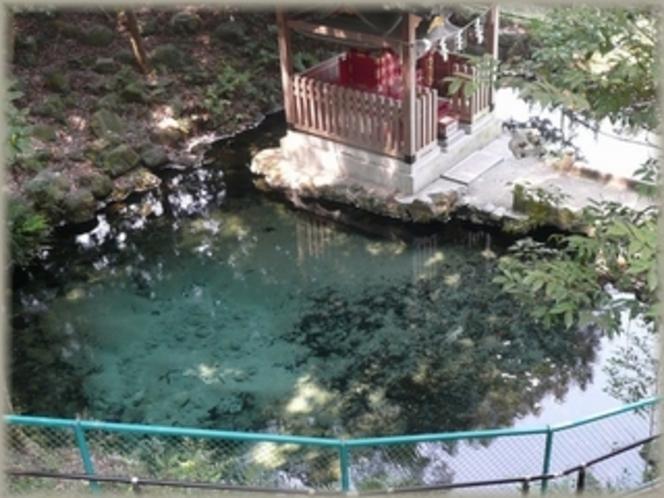 泉が森湧水 茨城県唯一の「平成の名水百選」