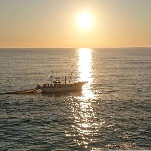 客室の目の前で、日の出前から繰り広げられるシラス漁のシーン