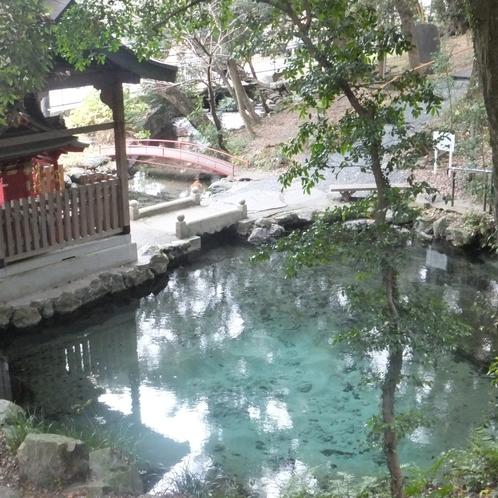 55パワースポット泉が森・太古の霊泉2800ピク