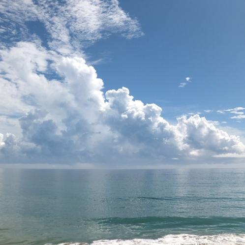水木海岸夏の風物詩55