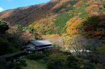 秋の雉子亭と湯坂山
