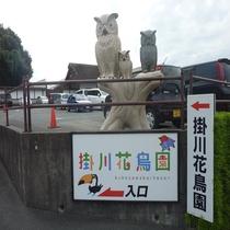 掛川花鳥園(車で5分)