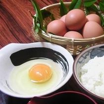 卵かけご飯セット 500円