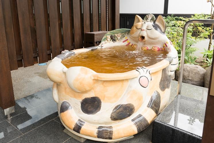 幸運を招くオスの三毛猫風呂