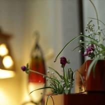 活けられた季節の花々