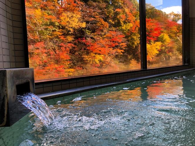 紅葉をながめる秋