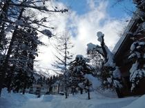 外観 冬山の風景