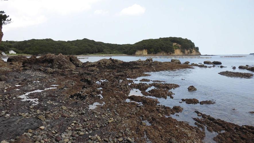 ◆敷地内の砂浜周辺(引き潮に現れる岩場)