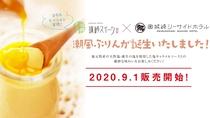【その他】奥城崎名物・潮風ぷりん(2020年9月1日販売開始!!!)