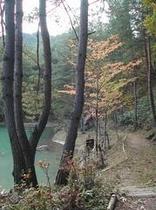 原山遊歩道