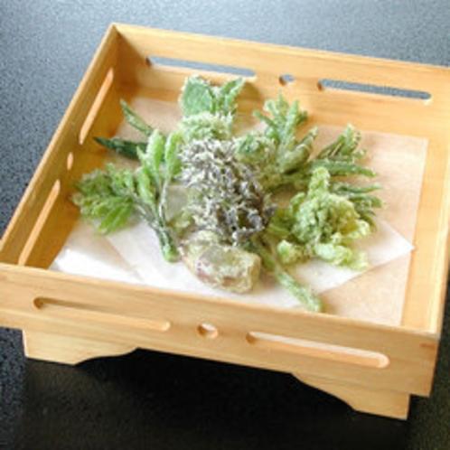 *山菜てんぷら(一例)