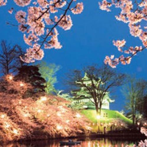 *日本三大夜桜・高田城址公園(夜桜イメージ)