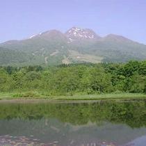 *いもり池(当館から車で約10分)妙高山を水面にくっきり映し出します。水芭蕉の群生地としても有名。